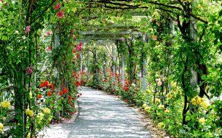 aménagement urbain avec création d'espaces verts